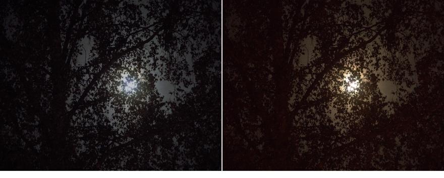moonlovers-1 kopiera 2