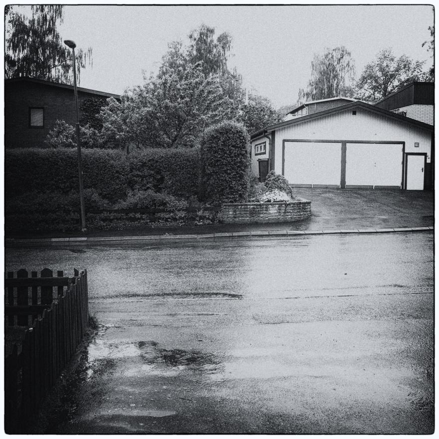 regnet-2