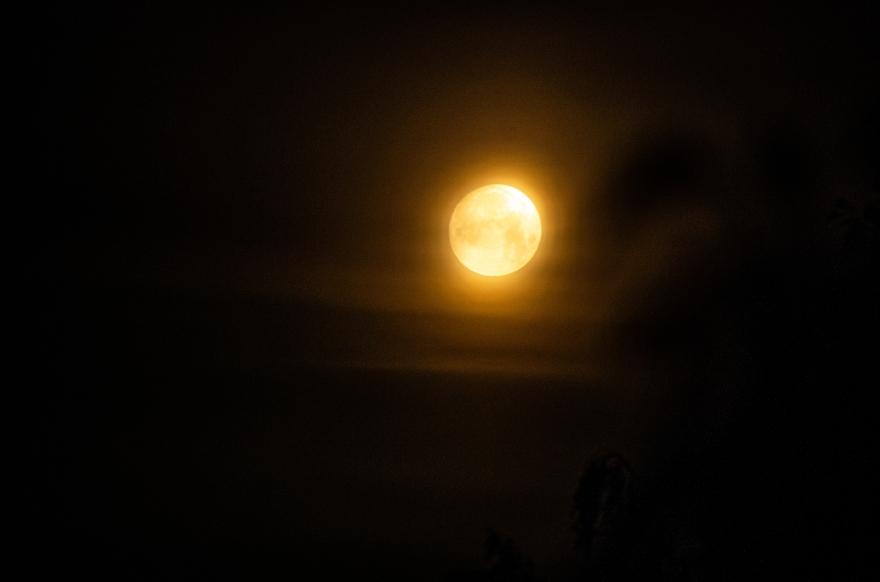 moon2 (1 av 1)